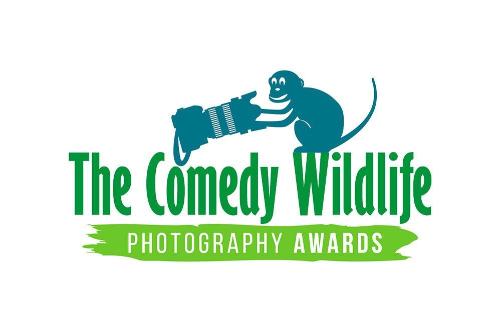 comedy-wild-life