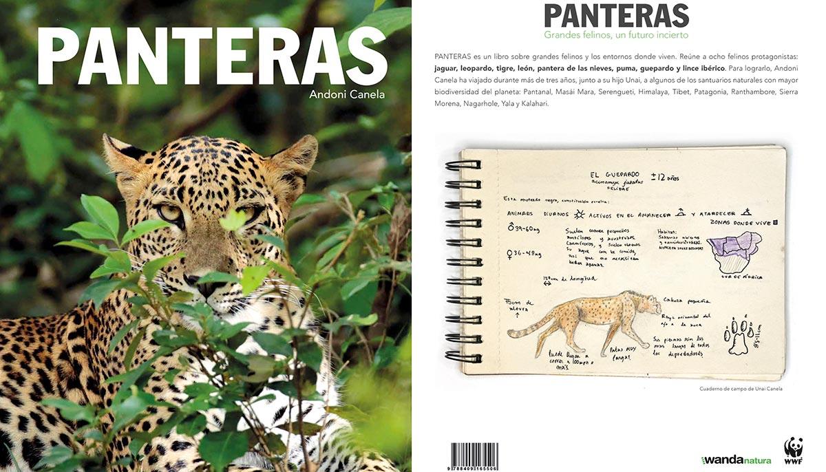 Panteras-01