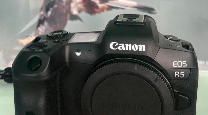 Canon-R5-Fio-01