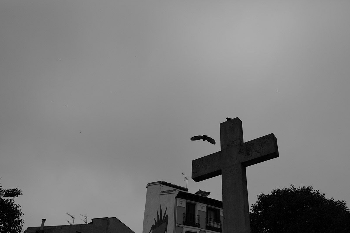 12-Javier-Aranburu