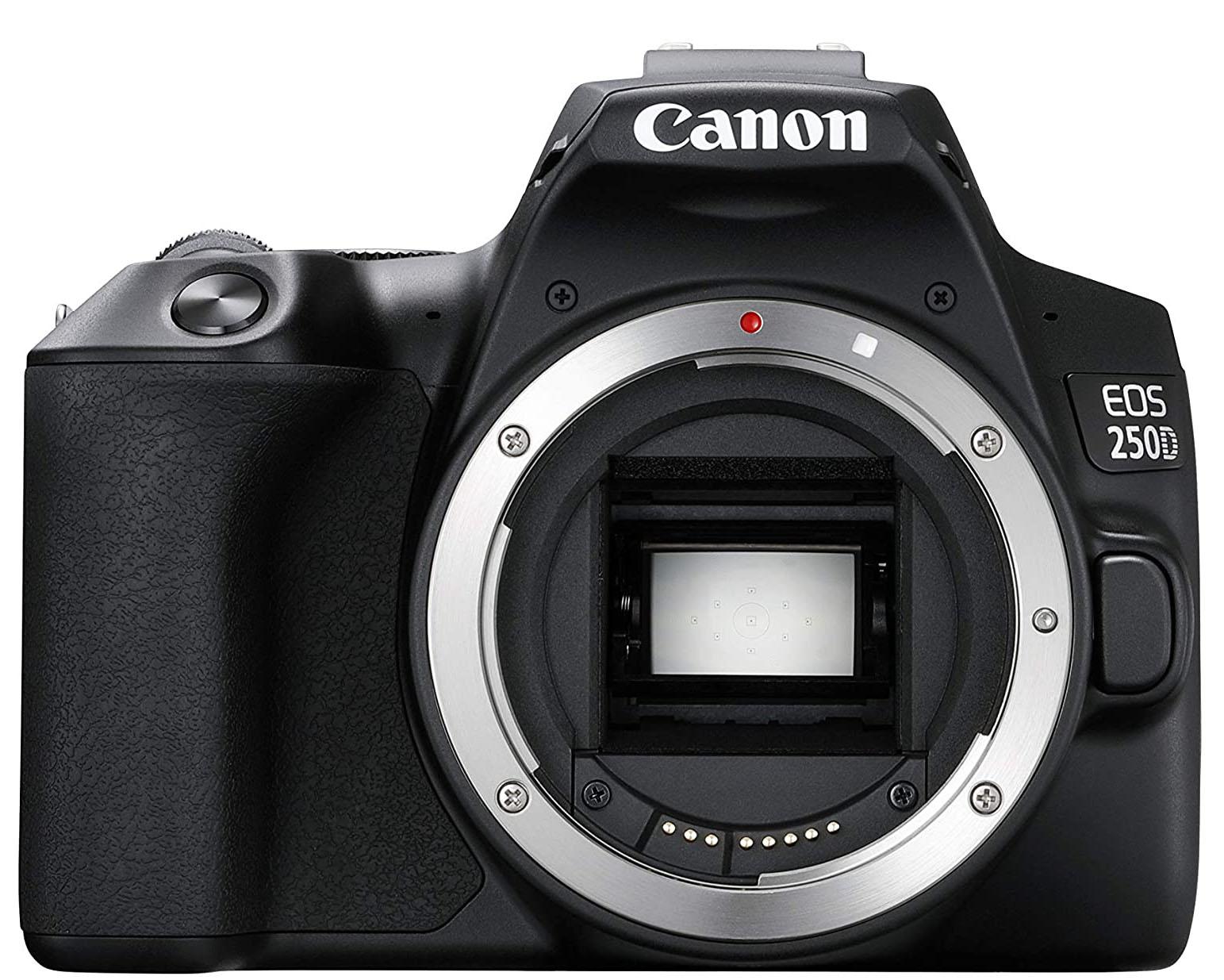 Canon 250D base de datos