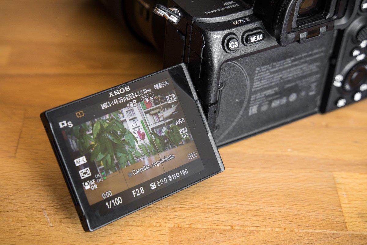Sony A7S III-7