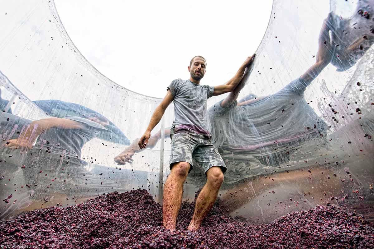 Errazuriz Wine Photographer of the Year – People© Victor Pugatschew