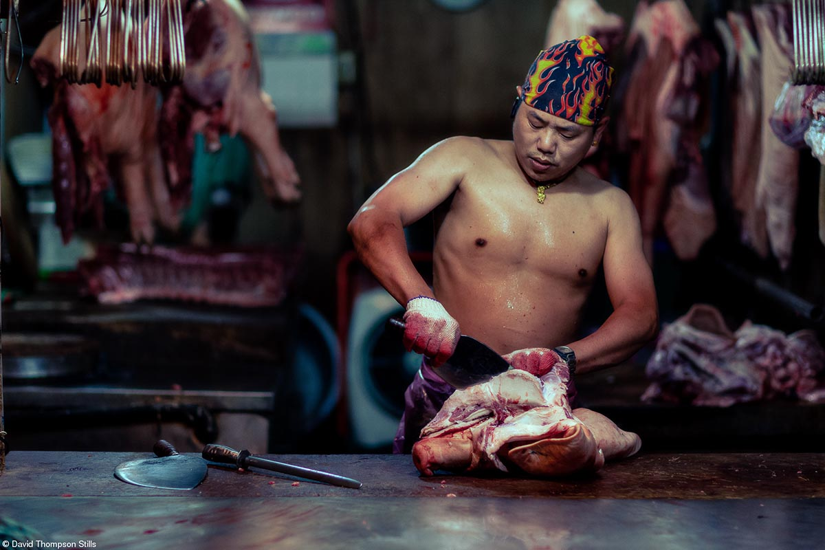 The Philip Harben Award for Food in Action © David Thompson